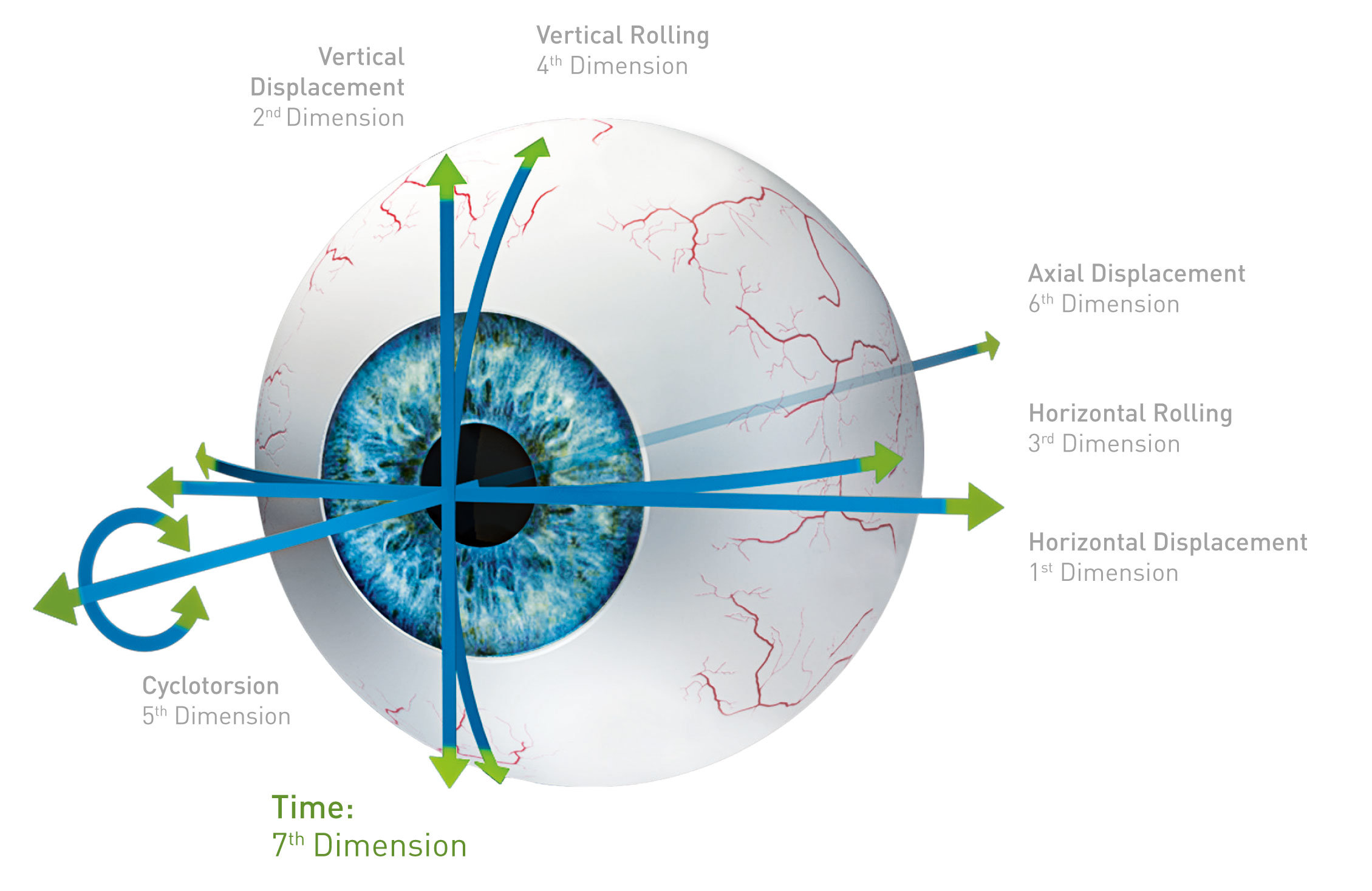 Eye-model with visualizing of the seven dimensions